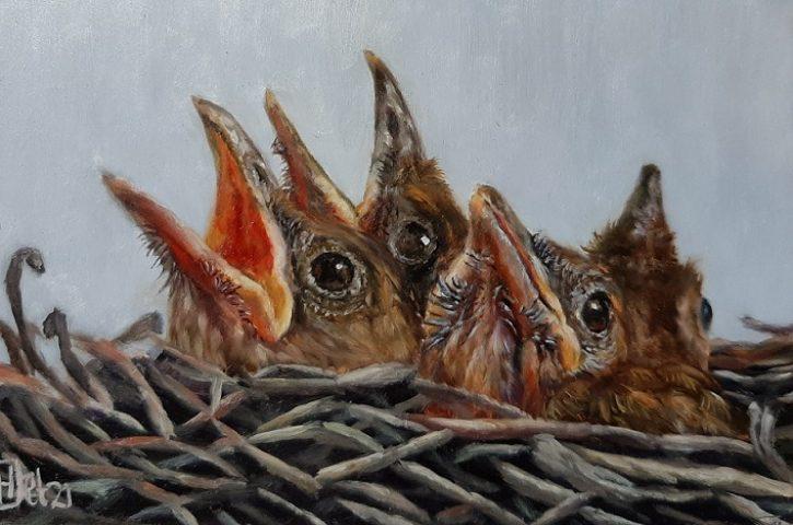 Jonge vogels olieverf op paneel 10x15cm