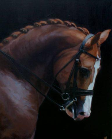 Paard aan de teugel