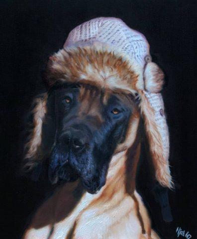 Dog Harry